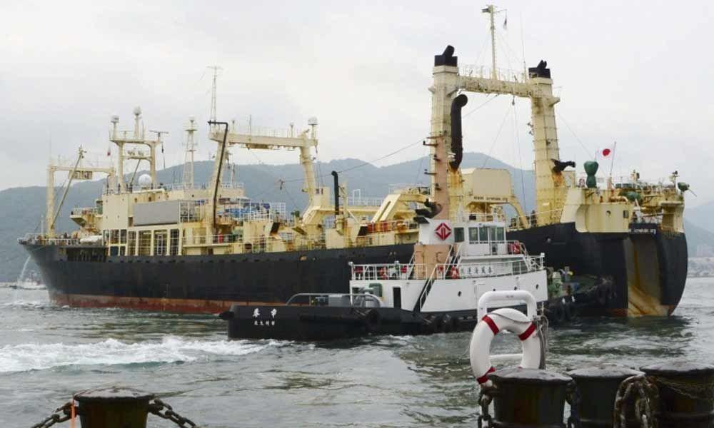 Japan resumes commercial whaling amid global backlash
