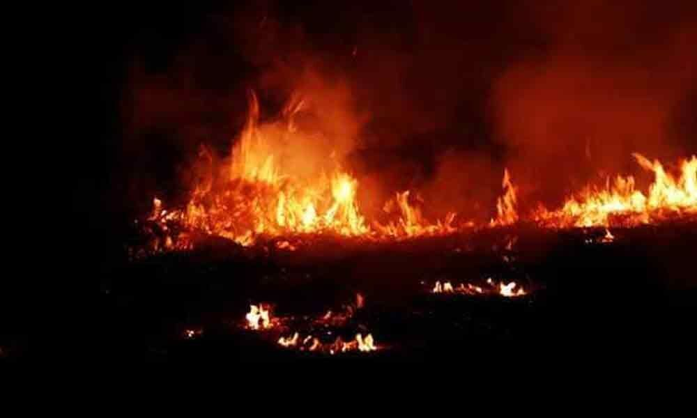 Fire Breaks Out At Building Housing Government Offices In Lucknow