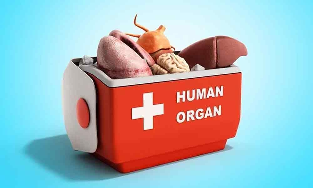 Organ transplantation : Panel soon to frame rules to check irregularities