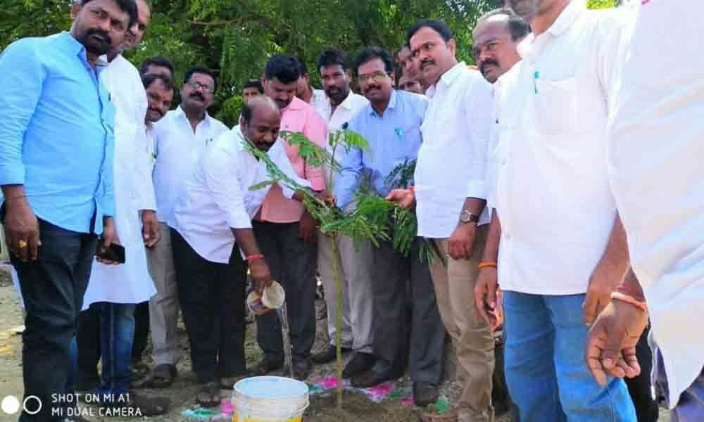 Plant more to increase green cover: MLA Lingaiah