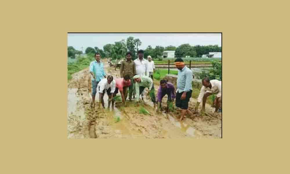 Villagers sow paddy on road in Peddapalli