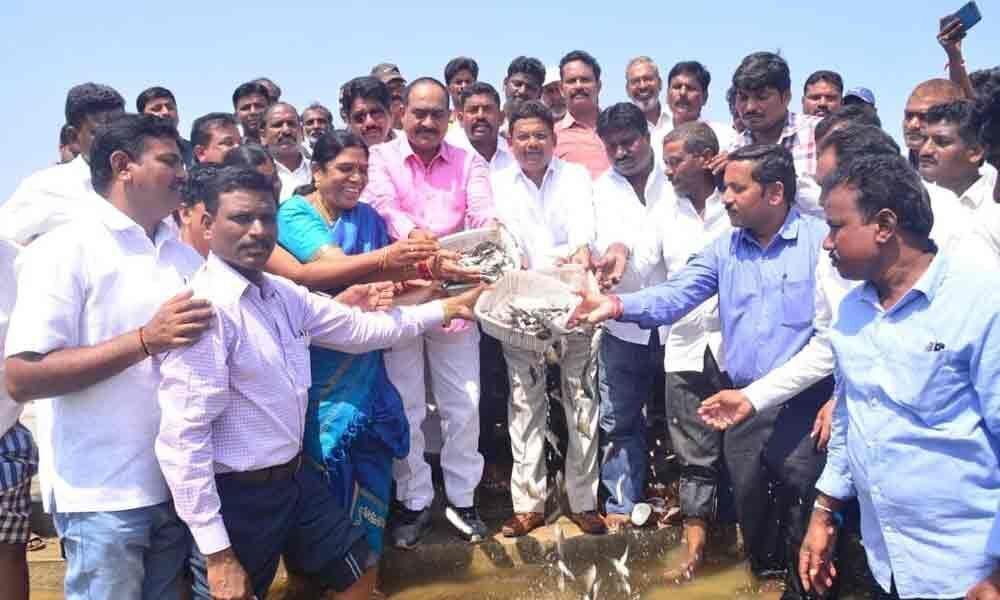 Wyra MLA, Khammam ZP chairman release fishlings into reservoir