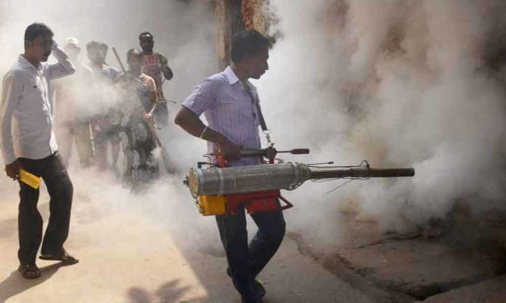12,000 dengue patients hospitalised in Bangladesh