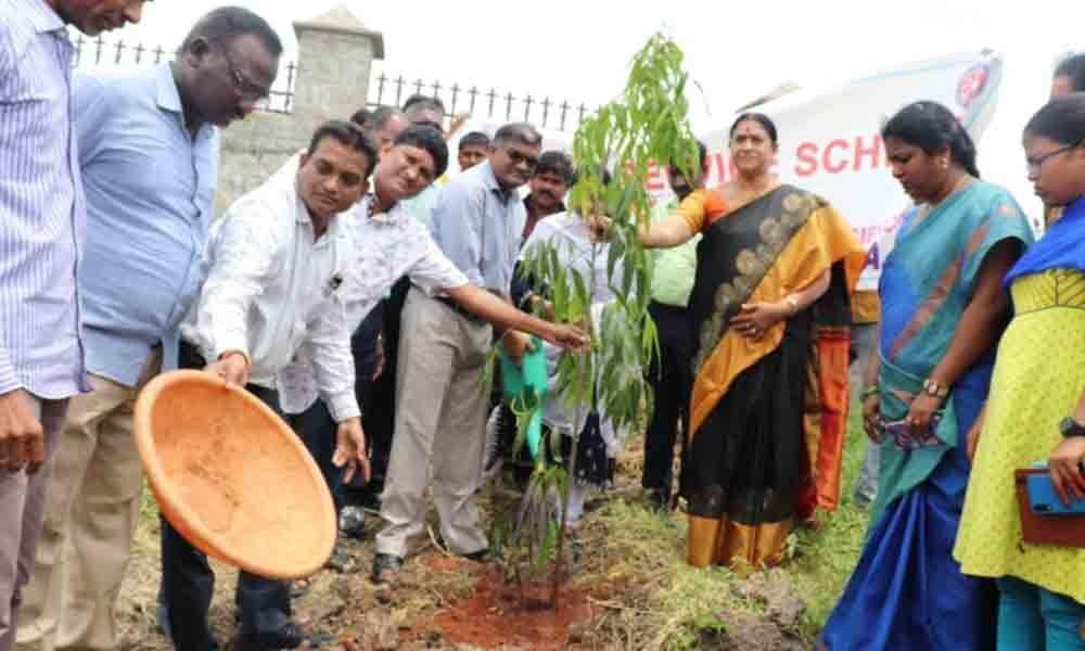 MG varsity students plant over 1000 saplings in Nalgonda