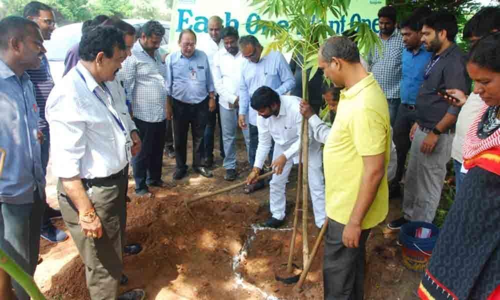 Ramagundam MLA joins NTPC in plantation drive