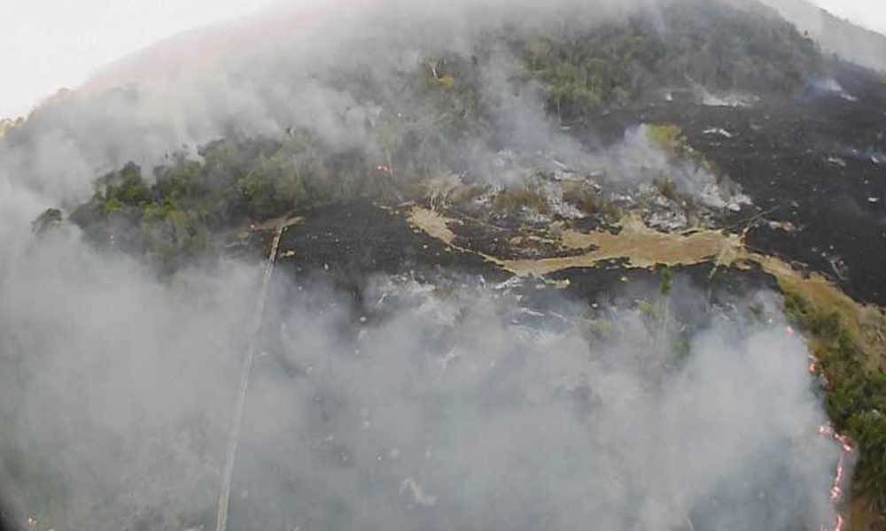 Amazon rainforest fires may be record-setting: NASA