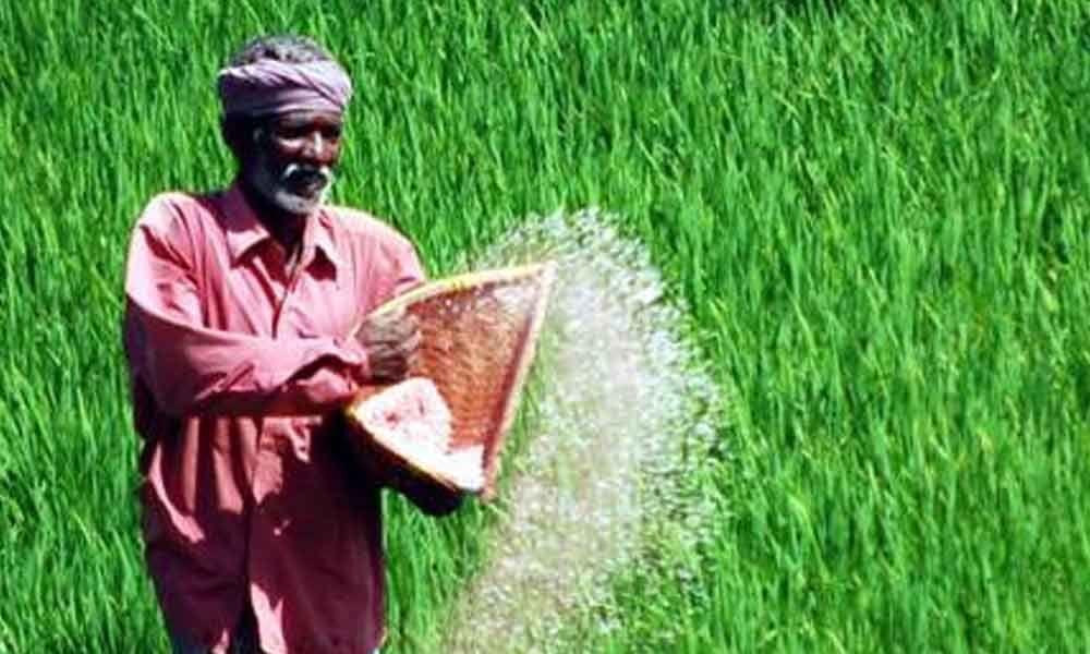 Minister Niranjan Reddy assures adequate supply of urea to farmers