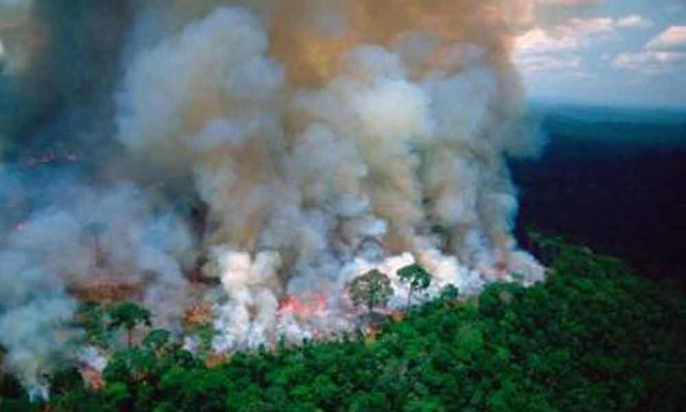 After global outcry, Brazil sends Army to put out Amazon rainforest fires