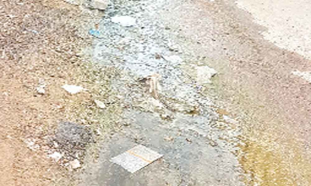 Sanitation wallows in official neglect