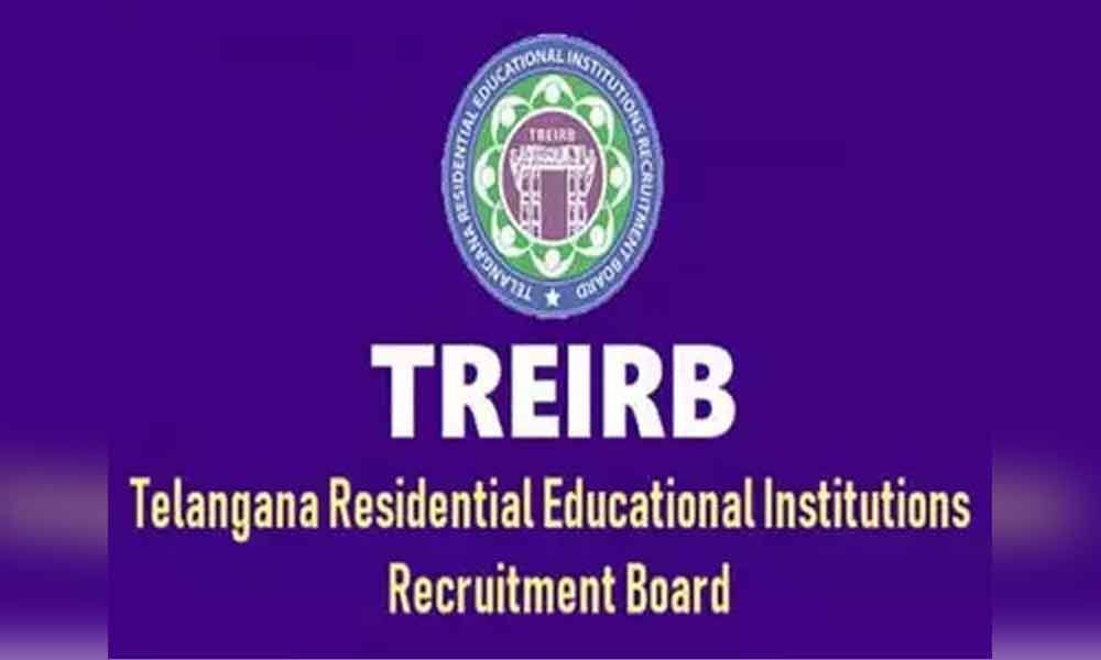 TREIRB Junior Lecturers 2019 final results released
