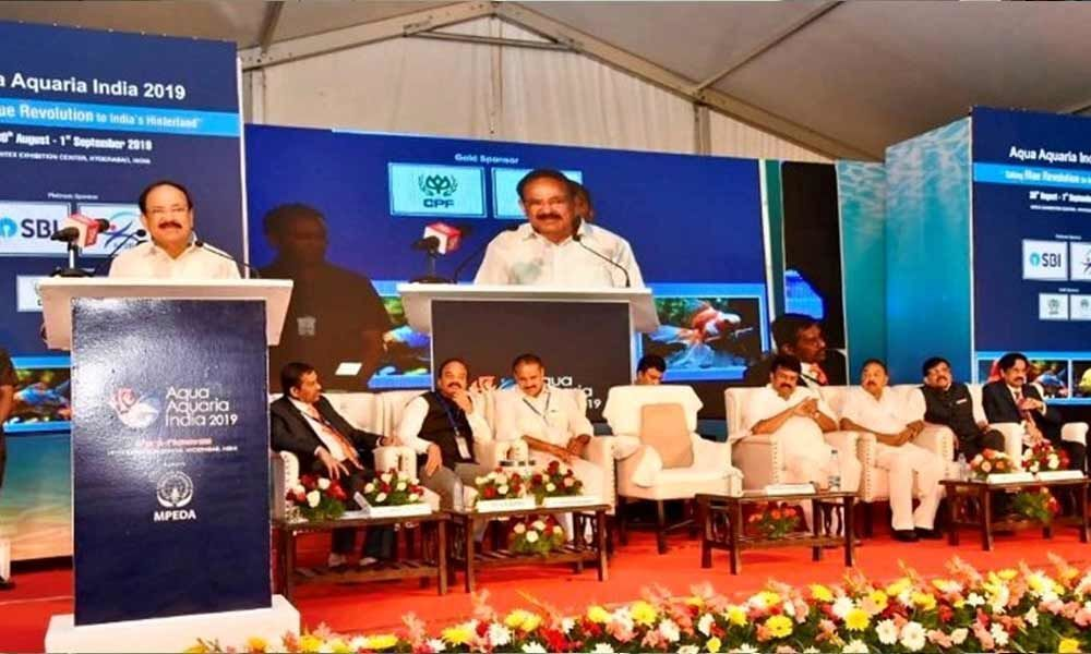 Concerns of marine and fresh water pollution must be addressed on priority basis: Vice President