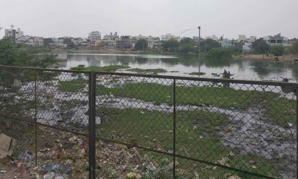 Pollution of Water Bodies : Alwal residents raise pitch for STP