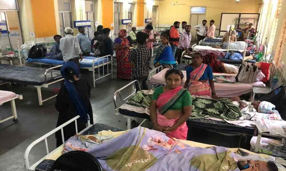 Telangana under the grip of dengue; nearly 5,500 positive cases in August