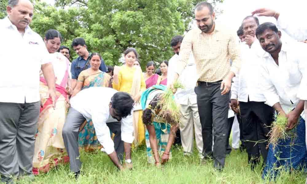 Collector launches 30-day plan, takes part in a cleaning drive in Khammam