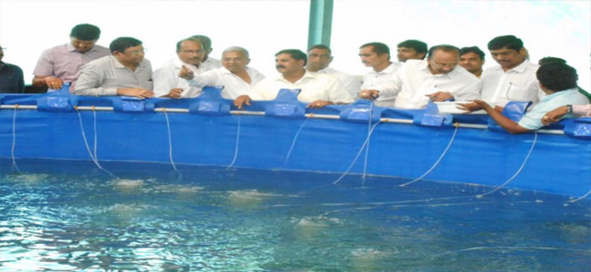 Government to help generate more income through aquaculture