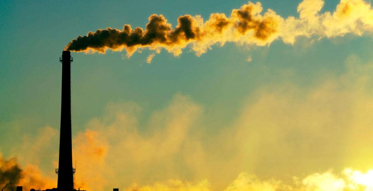How can we cut fossil fuel dependency