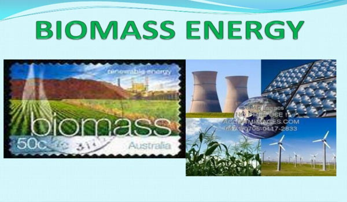 Move to tap biomass energy