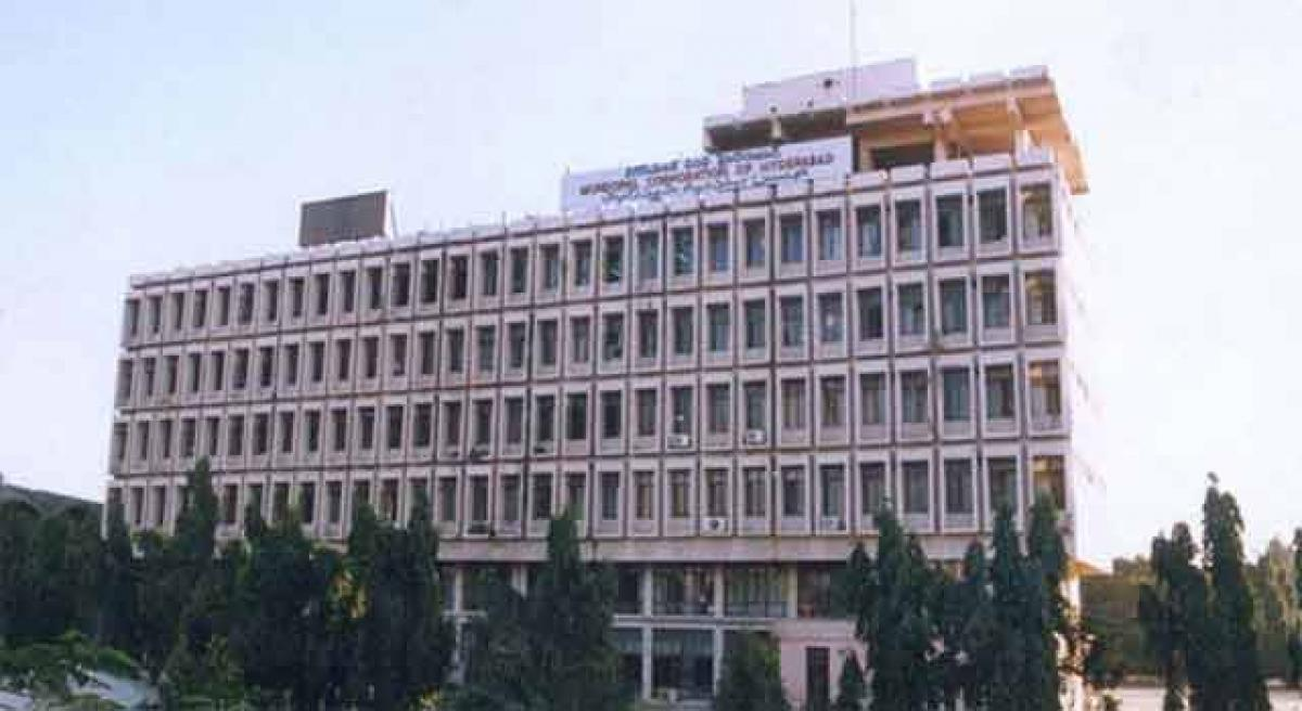 GHMC to replace trees with gale resistant ones