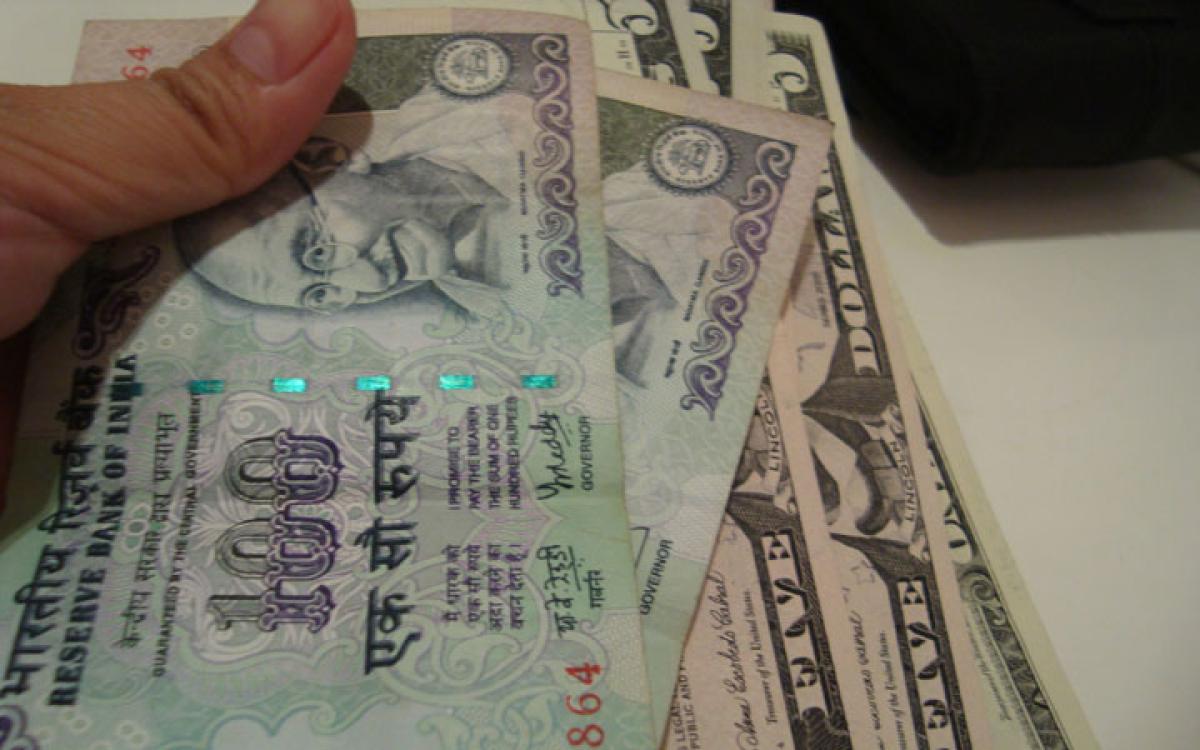 Impact of exchange rate volatility