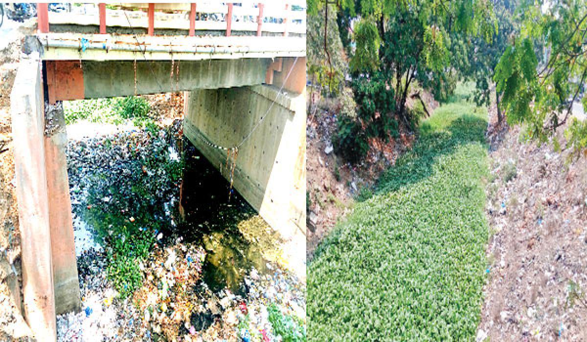 Beautification works yet to begin  in Eluru-Krishna Canal