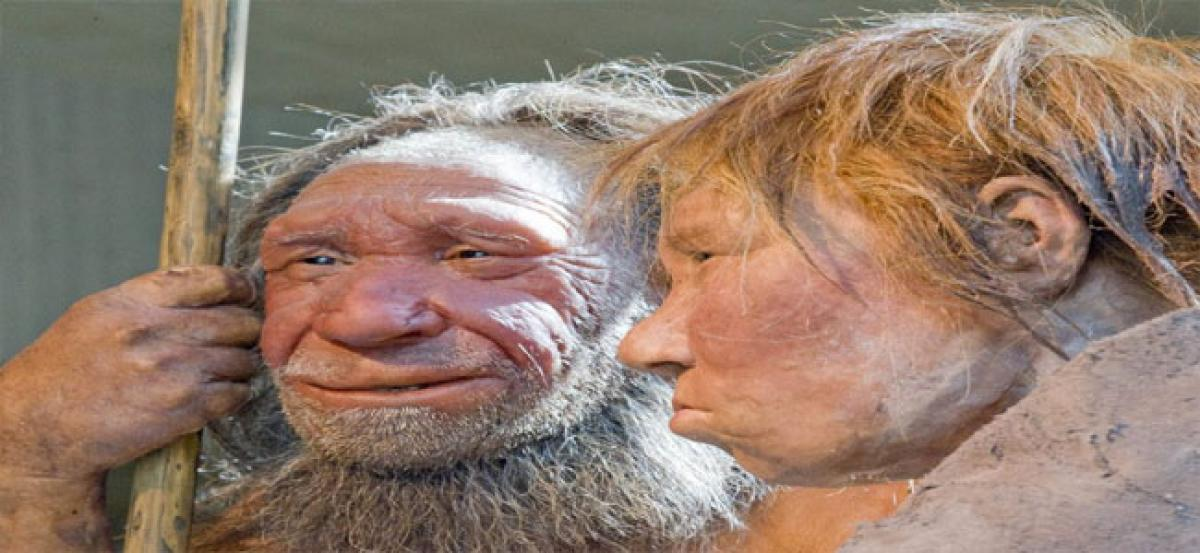 Compassion helped Neanderthals to survive: Study