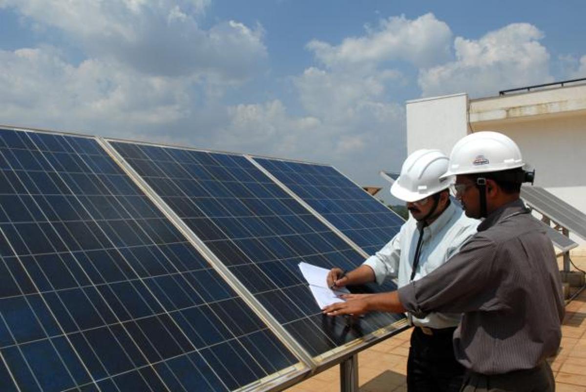 Gujarat farmer paves way for a new, climate-smart cash crop - sunshine