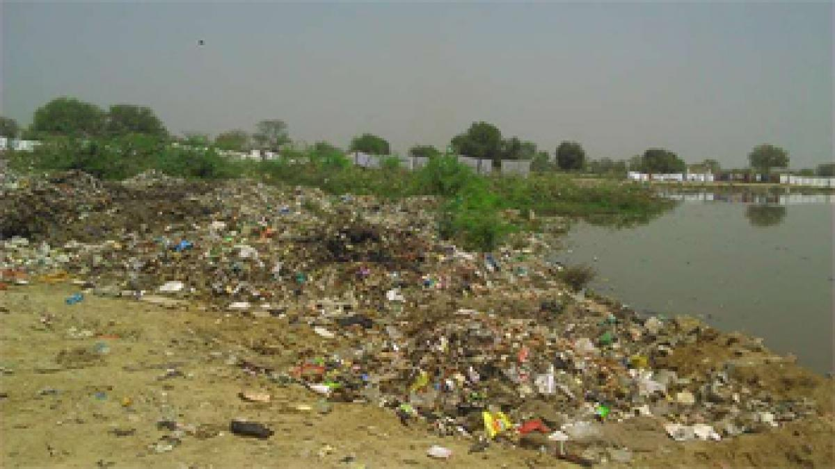 NGT commissioner to review Vrindavan situation