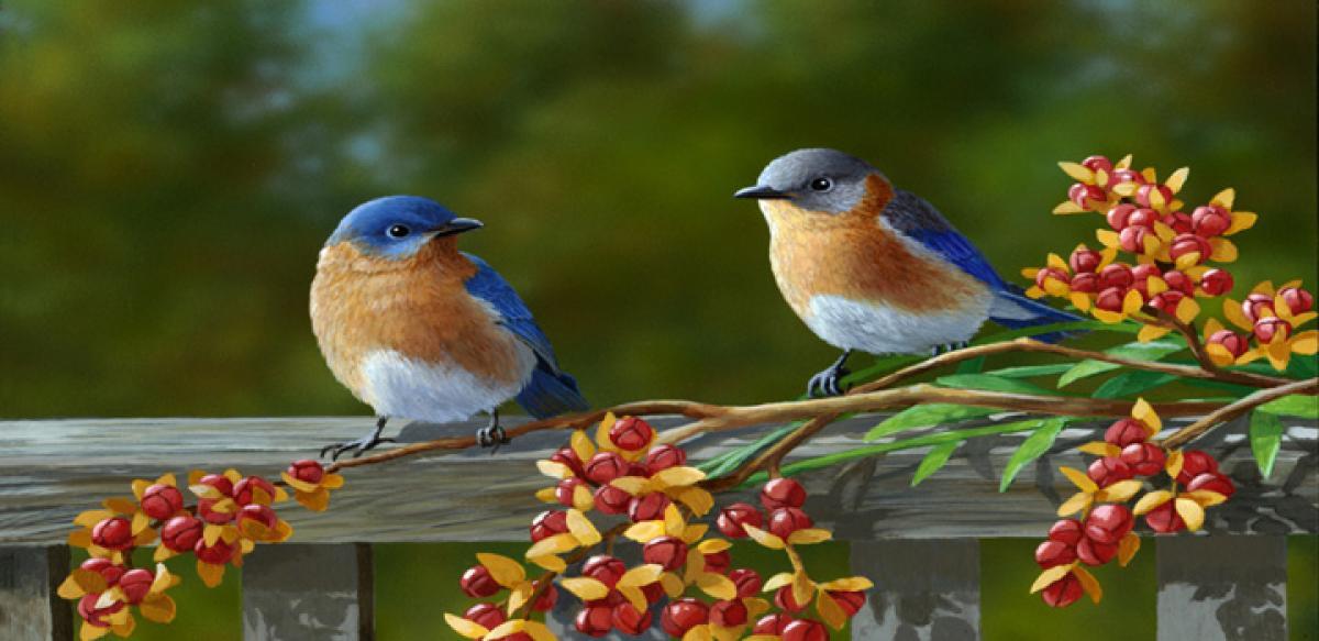 Malaria first spread from birds: Study