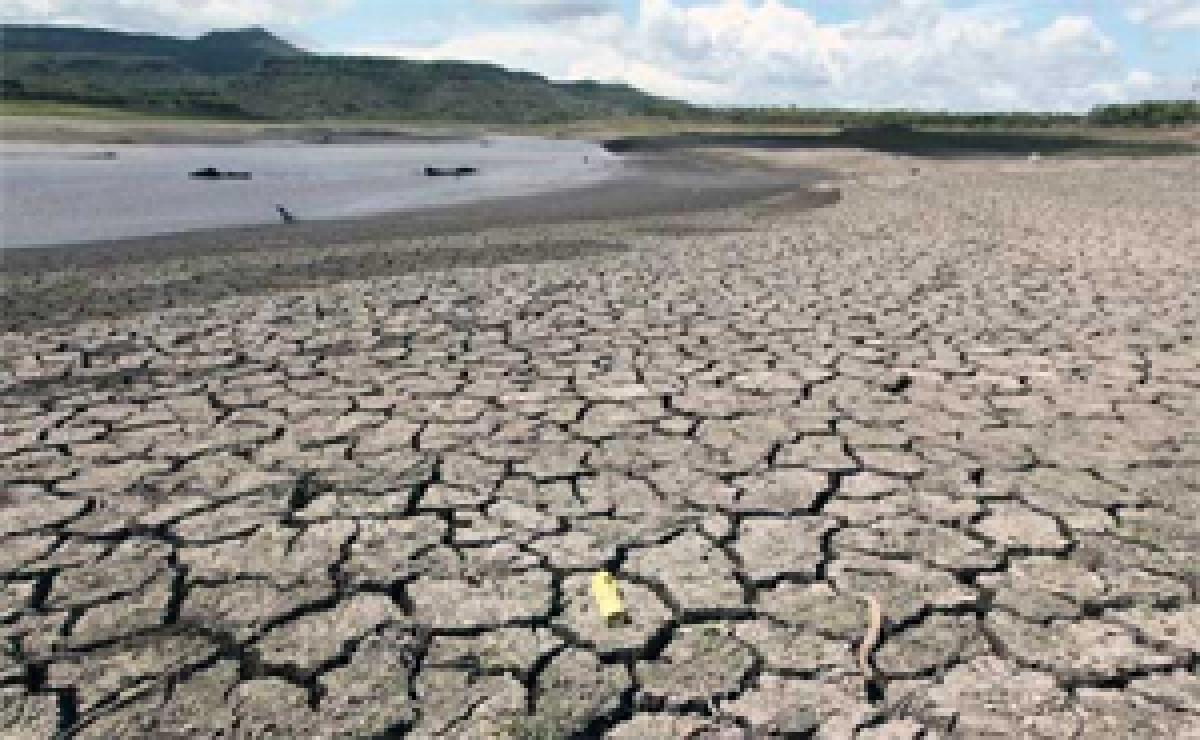 El Nino weather pattern has trimmed rainfall: IMD
