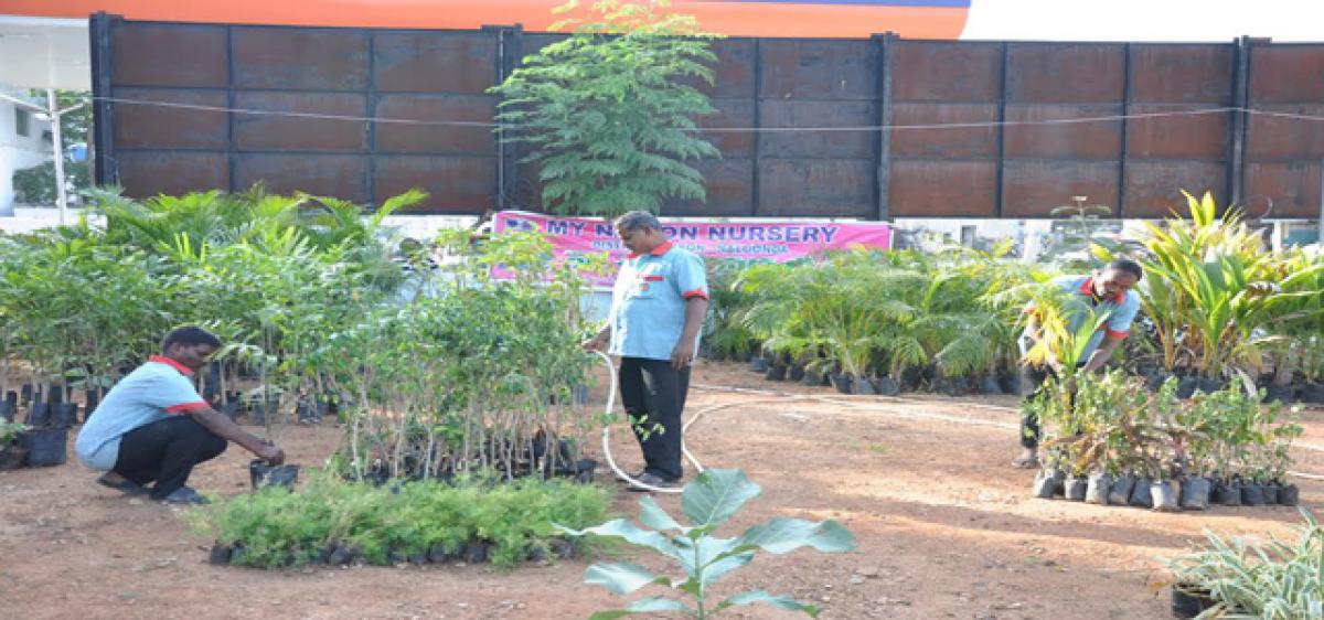 Nalgonda jail preps 1 lakh saplings
