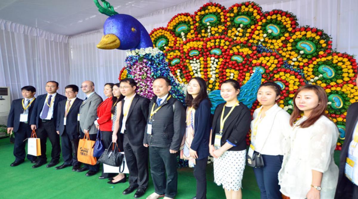 Foreign delegates hail Partnership Summit