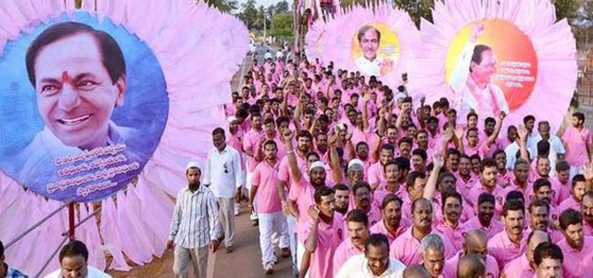 Kompally turns pink for TRS plenary