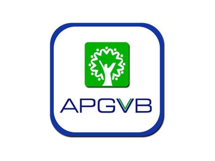 APGVB posts Q3 net of Rs 450 cr, up 12 percent