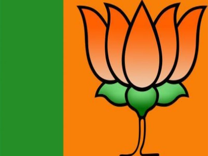 Protect age-old idols: BJP urges Joint Collector Vetri K Selvi