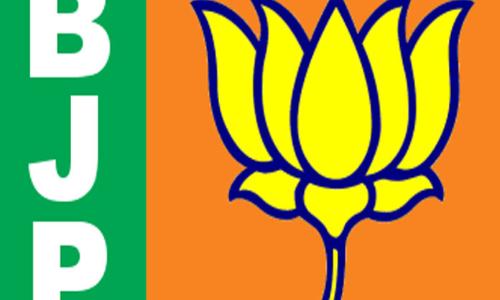 BJP playing patriotic politics