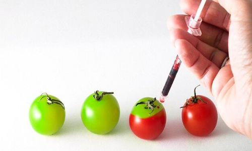 What is genetic modification?