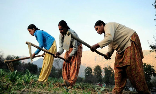 Invisibility of gender in Indian agriculture