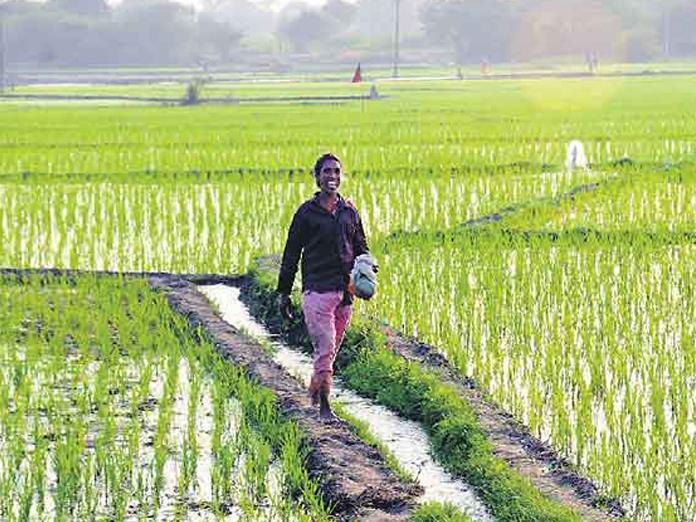 AP farmers to get cheques under debt-redemption scheme