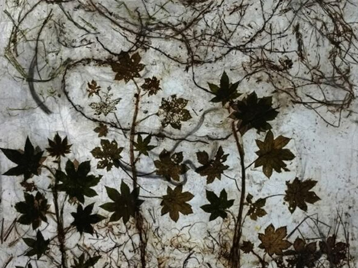 Nature unravelled through Art