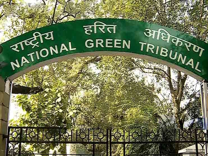 Mere passing orders not enough, ensure action against violations: NGT to authorities