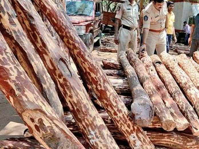 Taskforce officials seized Red sander logs