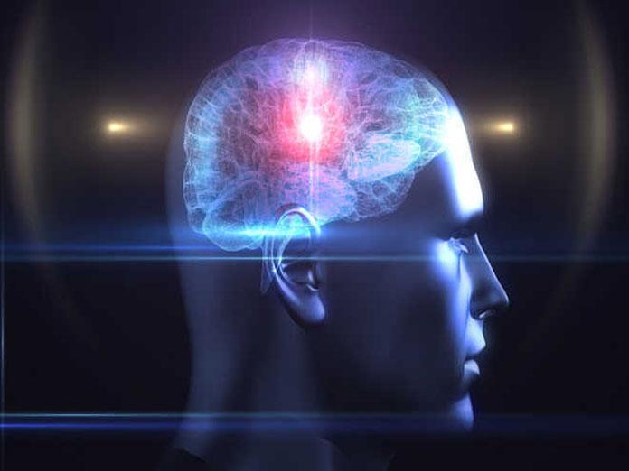 Novel organic transistor mimics brain