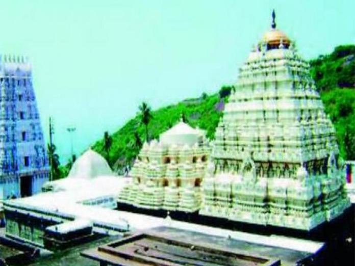 Penukonda festival should reflect Rayalaseema culture