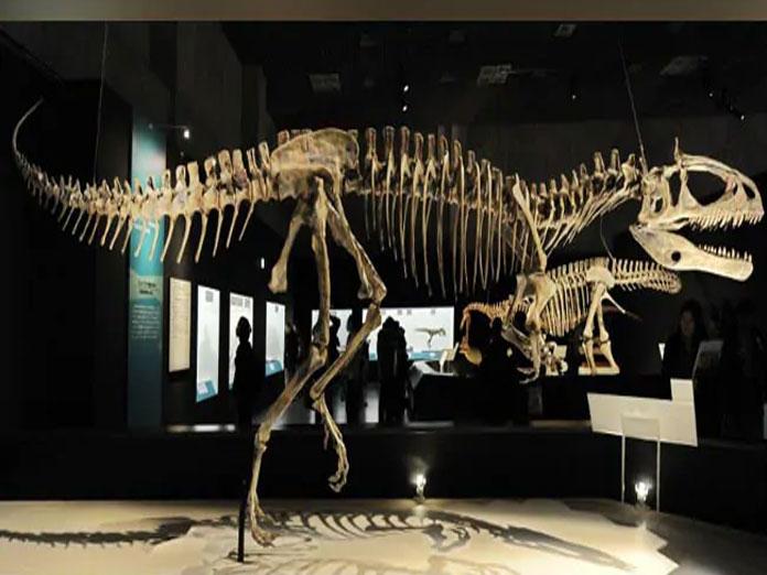 Were Dinosaurs Killed Off By Asteroid Or Volcanoes, Scientists Debate