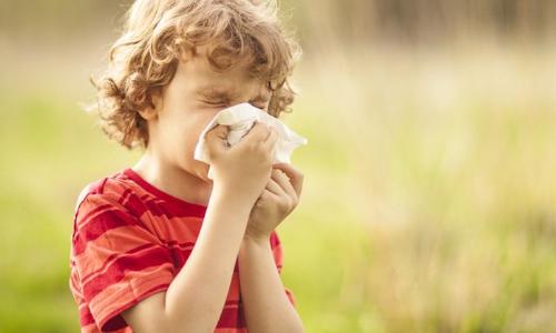 Experts focus on child allergies