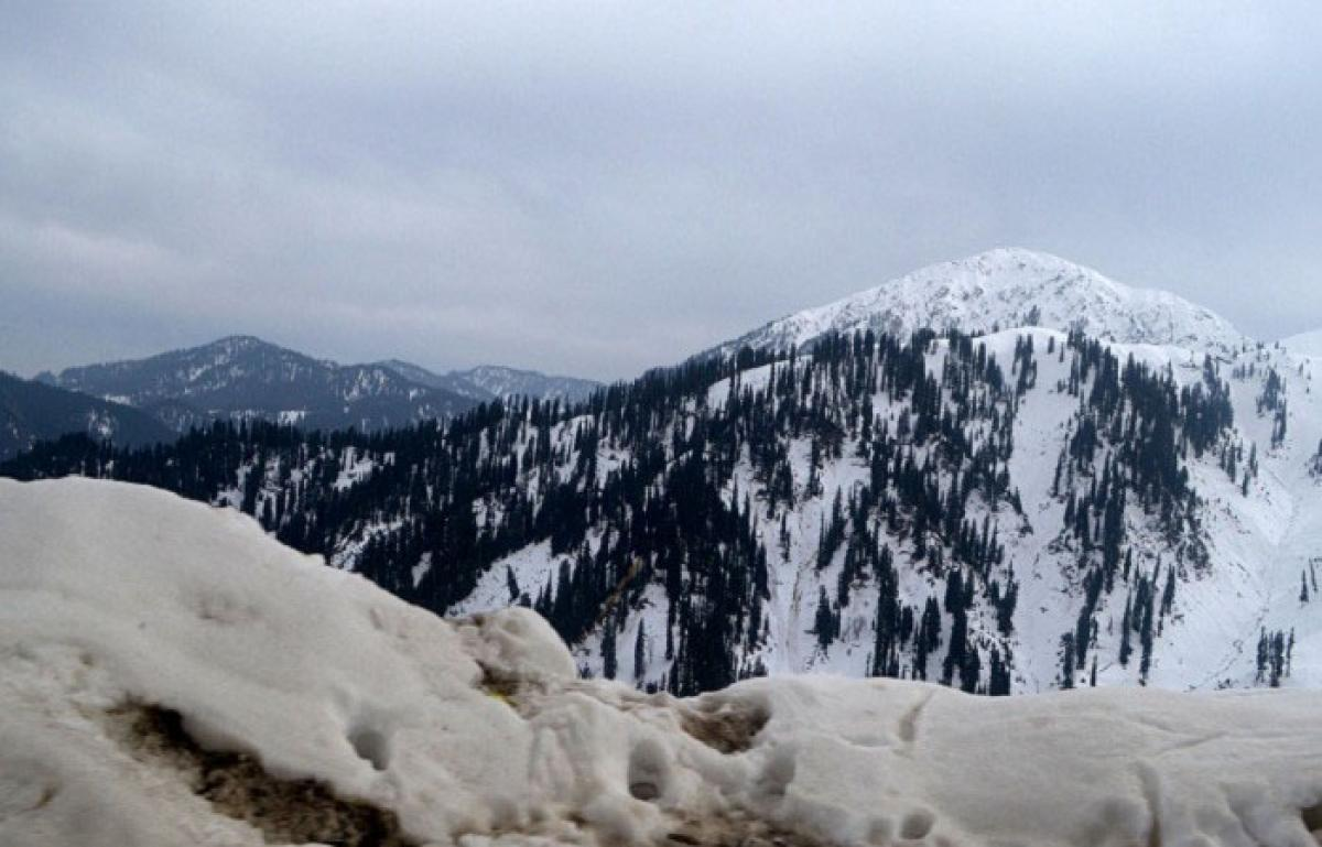 Rain, snow in J&K provide respite from cold