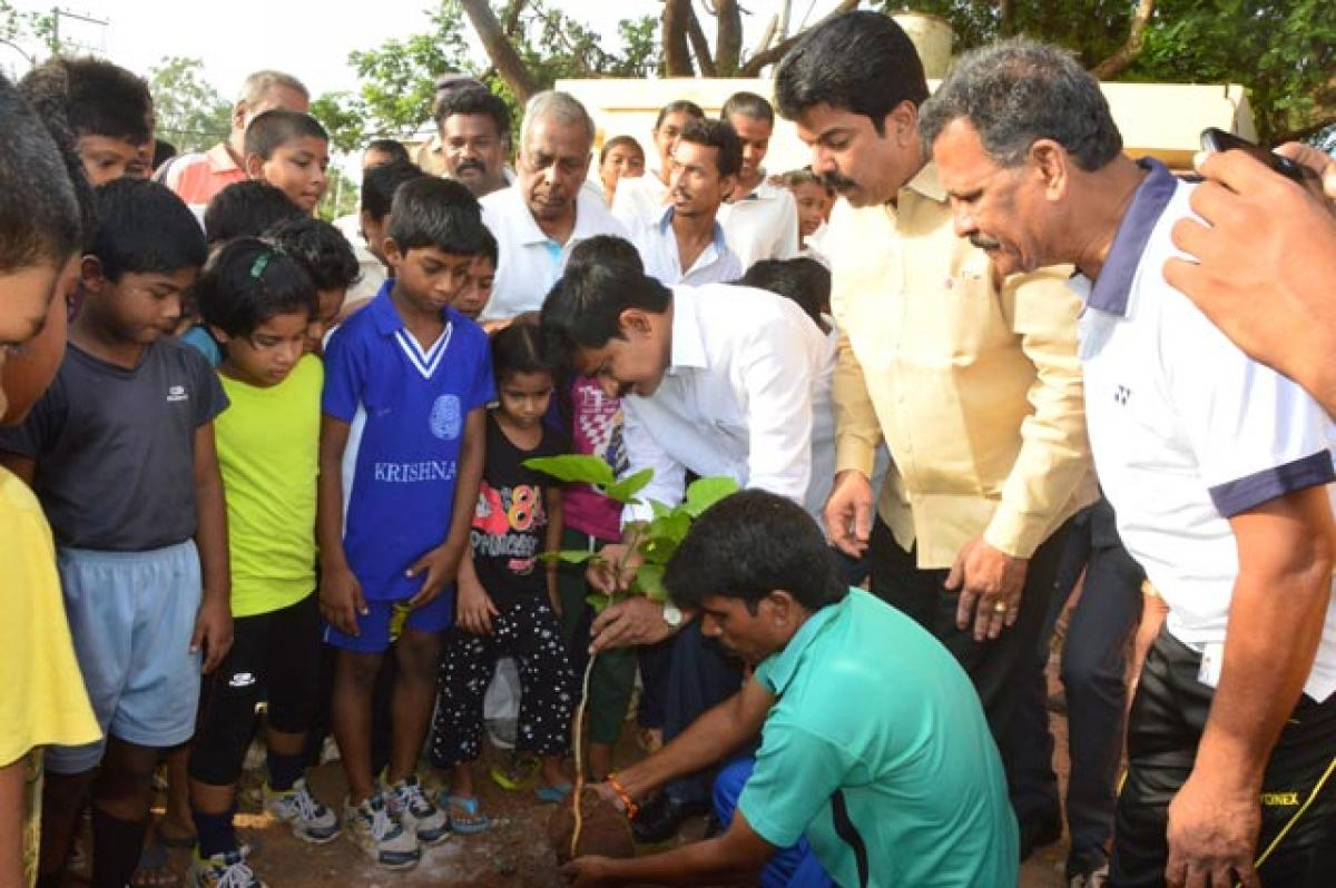 Help promote greenery: Minister