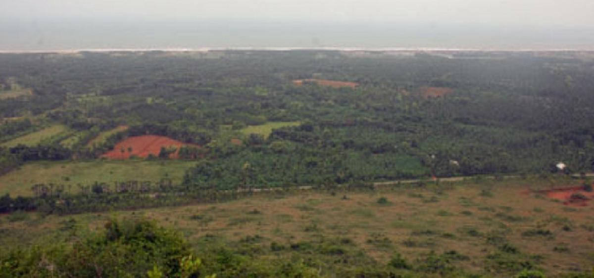 Land sharks encroach protected forest lands