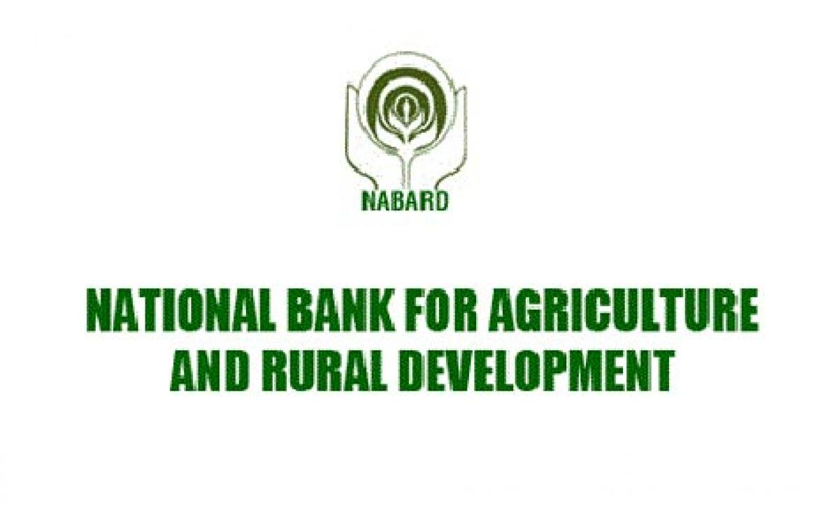 Nabard subsidy for bio-fertiliser units