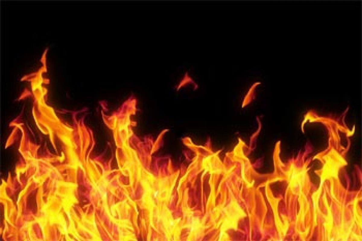 Fire destroys paddy crop